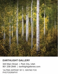 Earthlight Galleries