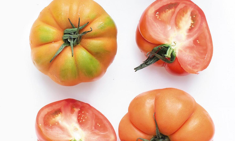 Praise The Tomato Mountain Express Magazine