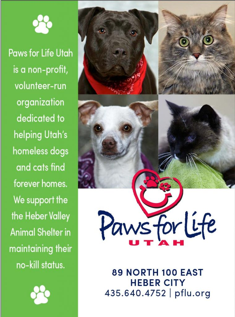 Paws for Life - Park City