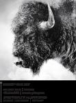 Mountain_Express_Magazine_S21 58